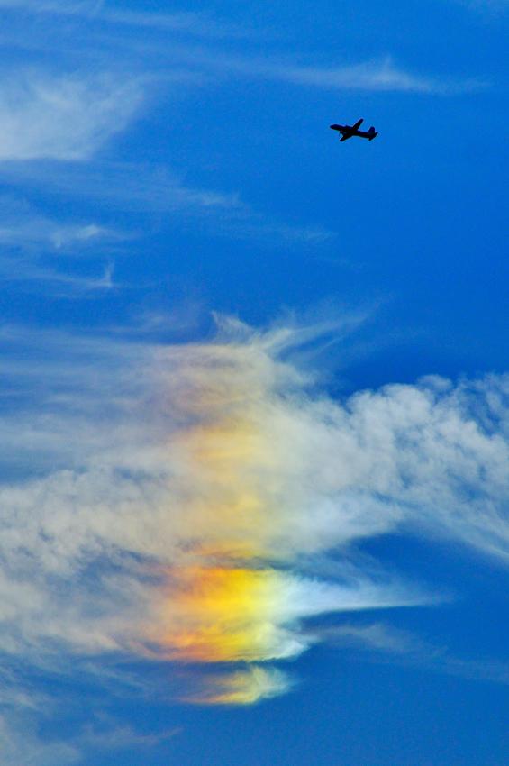 彩雲 (航空機)の画像 p1_36
